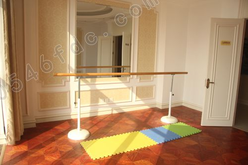 家庭舞蹈房装修效果图