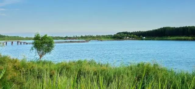 东营市将全面启动城南风景旅游度假区