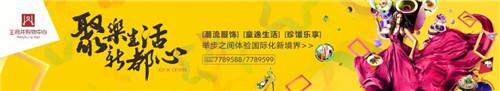 【东营王府井生活广场】聚乐生活新都心 带你走进王府井