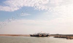 利津黄河大桥收费站2月17日起对来往车辆免收通行费