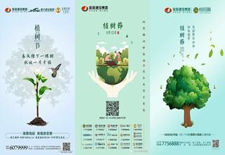 金辰建设集团3.12植树节微单集萃