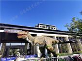 海通碧仙湖畔海通碧仙湖畔10.24恐龙展活动实景