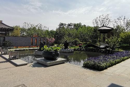 【广饶乐安大院】景观示范园水系景观