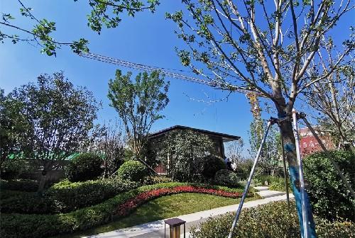 海通西溪蝶园7.25景观示范区开放
